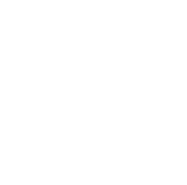 rocket heart graphic